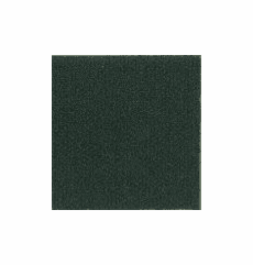 """Neptune Auto Cloth """"Spruce"""" (Solid Print) OUT OF STOCK"""