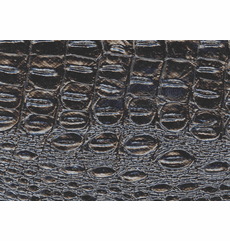 """Outback Crocodile """"Gloss Black"""" OUT OF STOCK"""