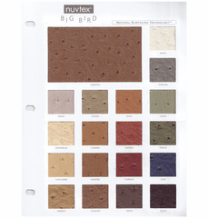 Purchase A Big Bird Sample Chart