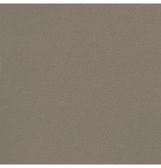 Revolution Montana Medium Prairie Tan