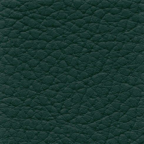 "XTREME ""Forest Green"""