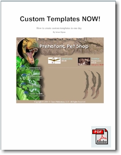 Custom Templates NOW! (e-book) - Click to enlarge