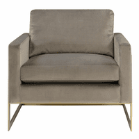 Accentrics DS-D199-700-970 Gold Frame Accent Chair - Grey