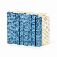 Go Home Linear Foot of Croc Faux Blue Books
