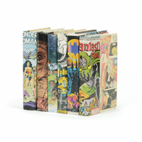 Go Home Linear Foot of Vintage Comic Book Design Books
