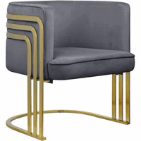 Meridian Furniture Rays Velvet Accent Chair Grey