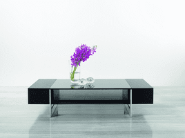 Modrest Glen - Modern Black Oak Coffee Table