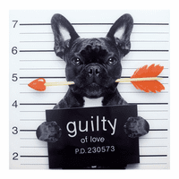 Moe's Home Furniture Guilty French Bulldog