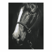 Moe's Home Furniture Racehorse Wall Decor