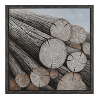 Moe's Home Furniture Timber Wall Decor