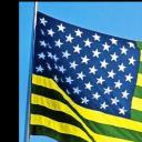 Estados Unidos do Brasil's avatar