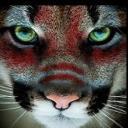 Lobiz On's avatar