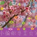 王哥's avatar