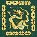dragon's avatar