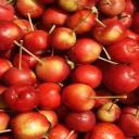 Cherry Apple's avatar