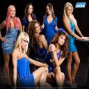 I love the wwe divas
