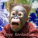 Zippy Kardashian