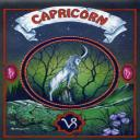 CapricornWoman_72