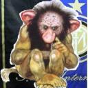 Baby Troll's avatar