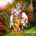 Gopala Krishna's avatar