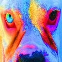 B.E.I.'s avatar