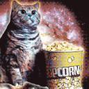 Krookery's avatar