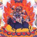 孟志's avatar