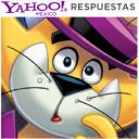 Don Gato, Yahoo Respuestas