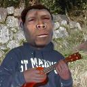 homo erectus's avatar