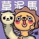 小炘炘's avatar