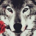 Doggie's avatar
