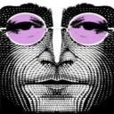 Imagine World Peace's avatar