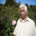 ramraj's avatar