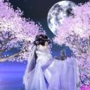 ☆ 芙蕾 ☆'s avatar