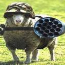 Sheep w/ Shotguns