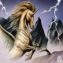 unicorn's avatar