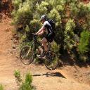 How do I find the model year of a Trek bike? | Yahoo Answers