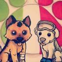 Shippo's avatar