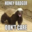 Honey Badger's avatar