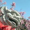 串串串珠's avatar
