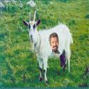 Bob Vila's avatar