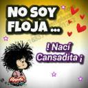 patapechugayalita's avatar