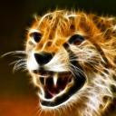 Mokae's avatar