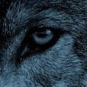 beowulf's avatar