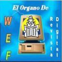 elorganodewef's avatar