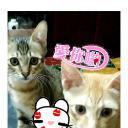 梅香's avatar