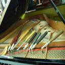 專業鋼琴技師 TIM CHOW's avatar