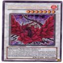 Drago Rosa Nera's avatar