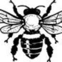 Buzzy's avatar