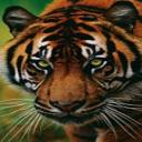 Emiliano's avatar